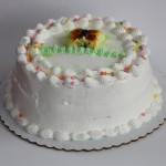 Custard Cakes